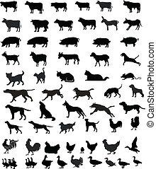 Animales mascotas siluetas
