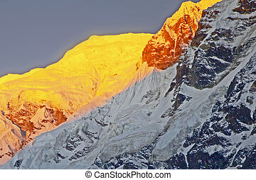 annapurna, himalaya, gama, majestuoso, salida del sol, luz, primero