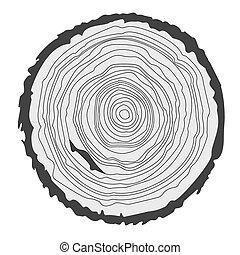 Antecedentes conceptuales con anillos de árboles. Gráficos vectoriales.