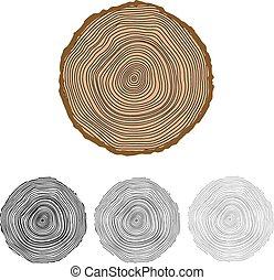Antecedentes conceptuales vectores con anillos de árboles.