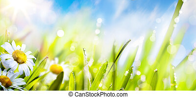 Antecedentes de flor de primavera de arte, hierba fresca en el cielo del sol