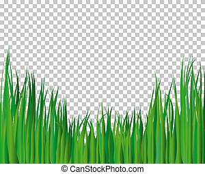 Antecedentes de hierba