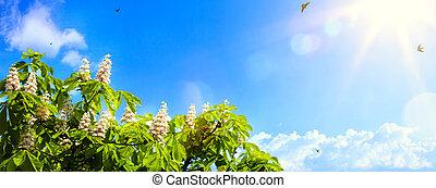 Antecedentes de primavera abstractos con flores de primavera en el fondo del cielo azul