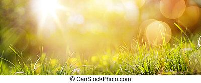 Antecedentes de primavera abstractos o de verano con hierba fresca