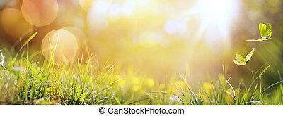 Antecedentes de primavera abstractos o de verano con hierba fresca y mariposa
