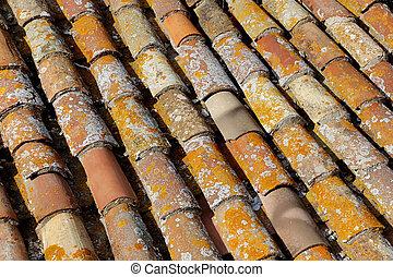 Antecedentes de techo