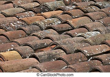 Antecedentes de techos viejos