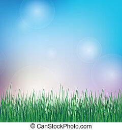 Antecedentes de verano con hierba verde