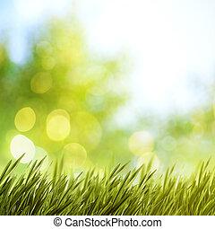 Antecedentes naturales de verano para tu diseño