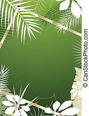 Antecedentes tropicales