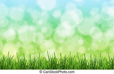 Antecedentes verdes.