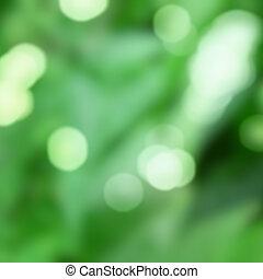 Antecedentes verdes con bokeh natural