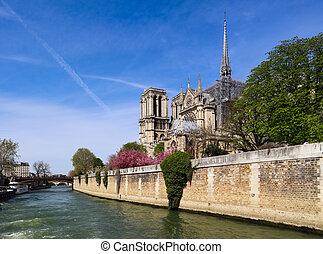 antes, francia, notre, jábega, dama, encima, fire., río, abril, spring., 05, parís, catedral, 2019.
