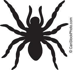 araña, vector