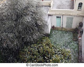 arbres, neige, sous, la