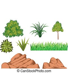 arbusto, roca