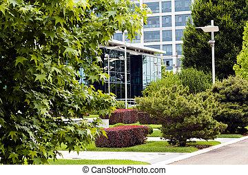 Arbustos en el parque