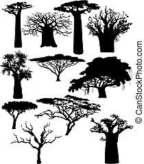 arbustos, vario, árboles, africano