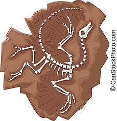 archeopteryx, caricatura, fósil
