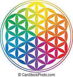 arco irirs, vida, flor, colores