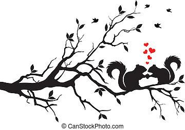 Ardillas en el árbol