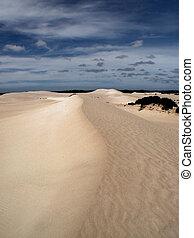 Arriba de la duna