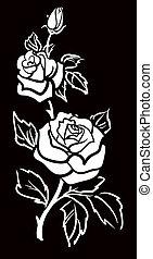 arte, vector, gráfico, flor, w, rosa