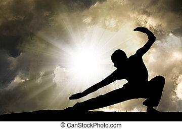 artes marciales, practica, plano de fondo, hombre