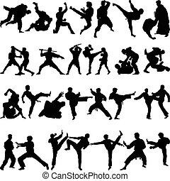 artes marciales, vario, posiciones