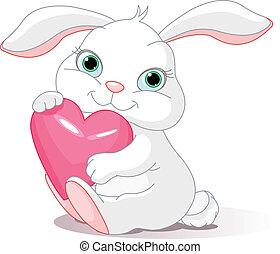 asideros, corazón, amor, conejo