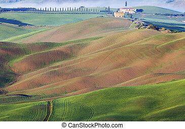 Asombroso paisaje de colmillos
