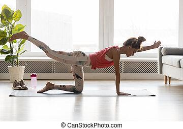 ataque, brazo, tablón, pierna, el estar parado para arriba, postura, mujer