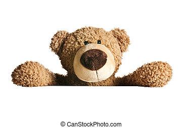 atrás, panel blanco, oso, teddy