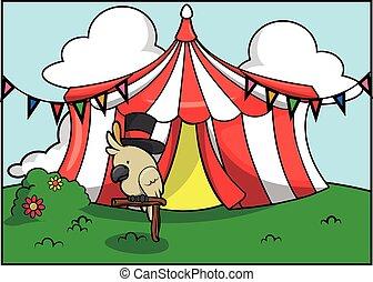 Atracción de circo de loros blancos