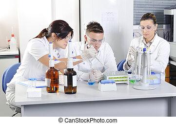 Atractivas jóvenes estudiantes de medicina
