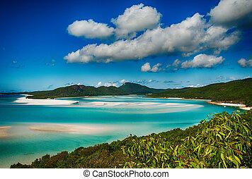australia, laguna, whitehaven, parque nacional, tropical, mar, queensland, mundo, heritage., playa, coral