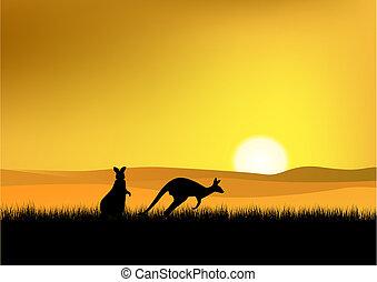 australia, ocaso