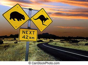 australiano, muestra del camino