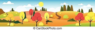 Autumn paisaje bosque carretera azul cielo azul