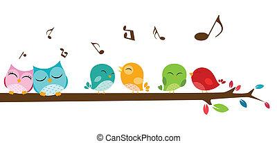 aves, rama, canto