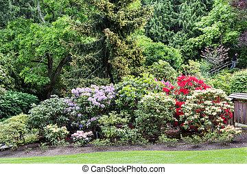 Azaleas brillantes y rododendros