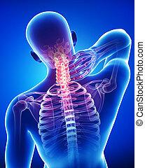 azul, anatomía, macho, dolor, cuello