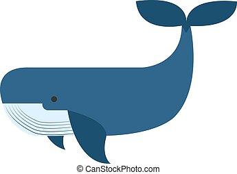 azul, blanco, fondo., ballena, vector, ilustración