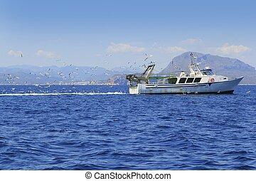 azul, muchos, gaviotas, océano, profesional, fisherboat