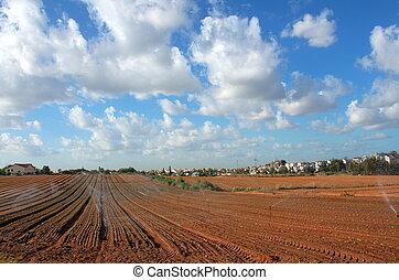 azul, nubes, israel, tierra, irrigado, regadera, campo, granja, cielo, -, cosechas, plantado, crecer, fértil, nuevamente