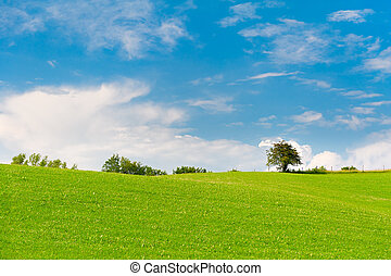 azul, pradera, cielo, árboles, verde, nublado, horizonte