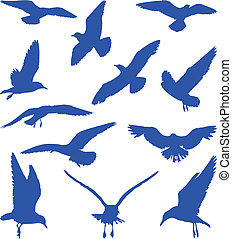 azul, siluetas, gaviotas, aves