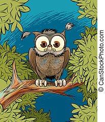 Búho en una rama de árbol