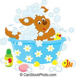 Baño de perros
