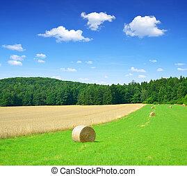 Bale de paja en un campo verde exuberante